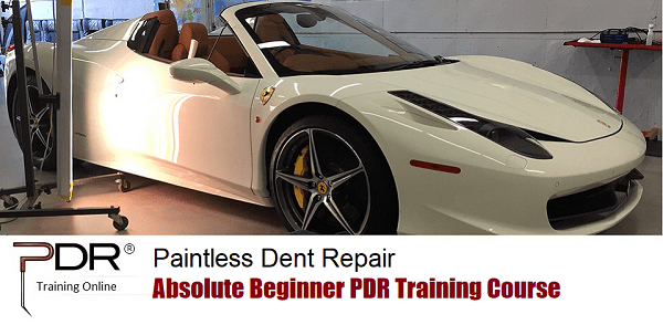 PDR Training Online Beginner Course